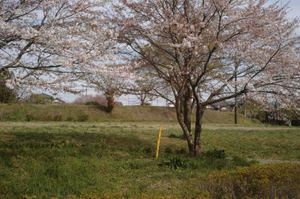 2011_04_17_002_2
